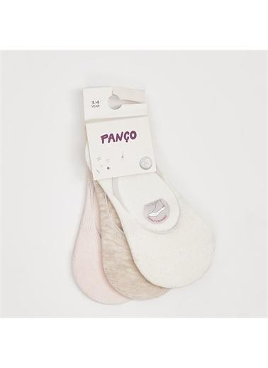 Panço 3 lü Çorap 19136044108 Renksiz